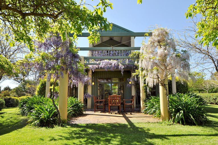 Barnhouse_Patio_External_Close_Wisteria_North_02